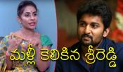 Sri Reddy Comments On Nani And His Wife
