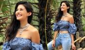 Amyra Dastur Hot Photo Shoot Details