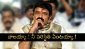 Balakrishna Telangana Elections Campaign got Failed