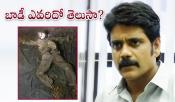 Story Behind Nagarjuna Farm House Dead Body