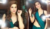 Shraddha Das Latest Hot Photos