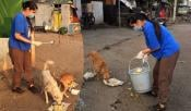 Anchor Rashmi Care For Street Dogs