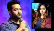 NTR Fans Meera Chopra Issue