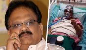 SPB Is Recovering