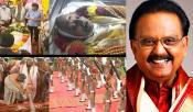 SP Balasubrahmanyam Final Rituals