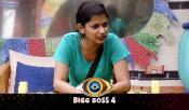 Bigg Boss Telugu 4 Ariana News