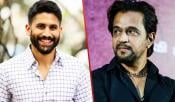 Naga Chaitanya Arjun Movie